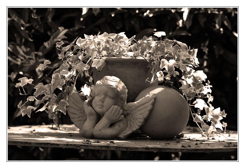 Ein Engel im Garten