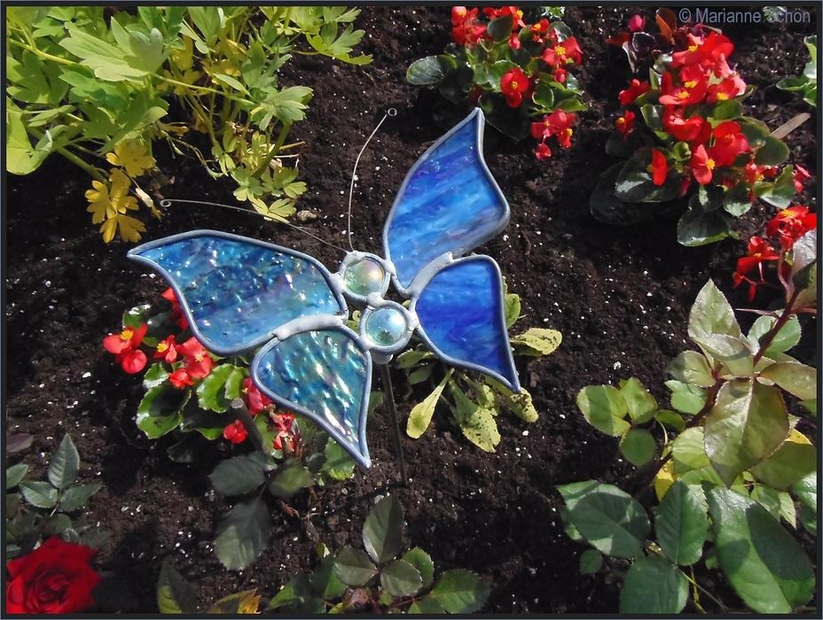 Ein etwas anderer Schmetterling