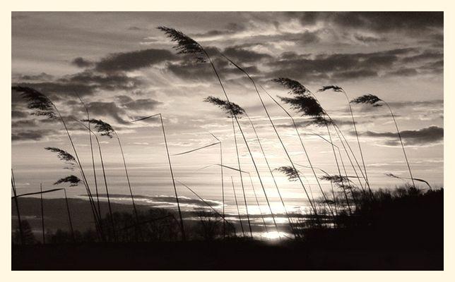 ein etwas anderer Sonnenaufgang...