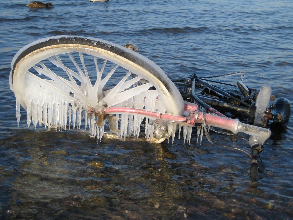 ein Fahrrad im Rhein