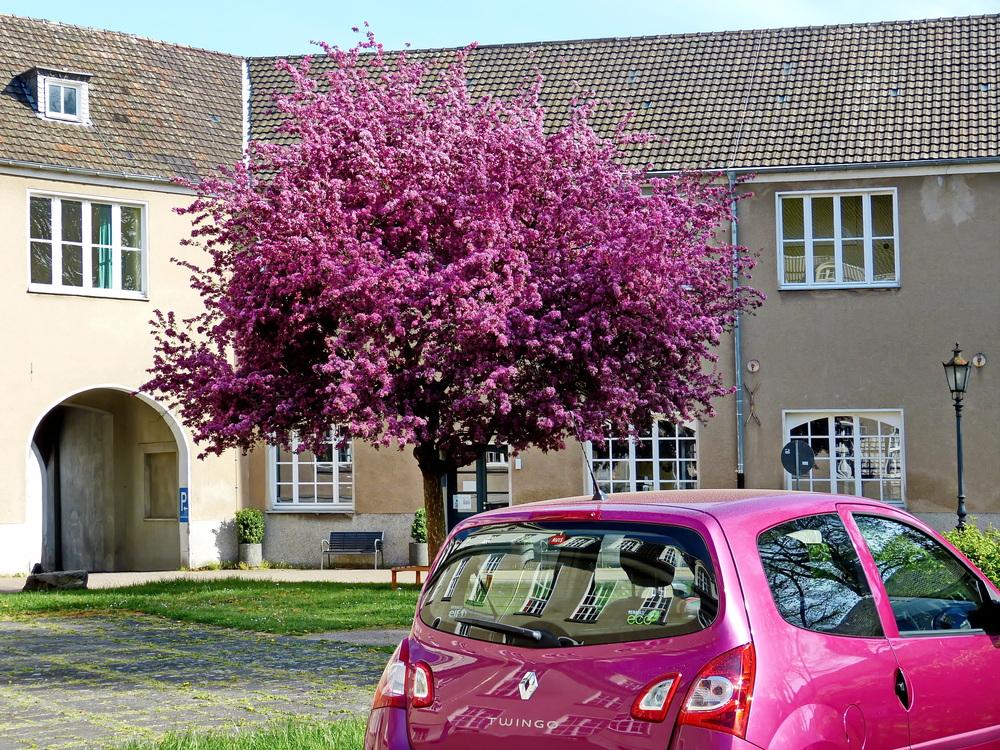 Ein farbgenauer Frühlingsparkplatz