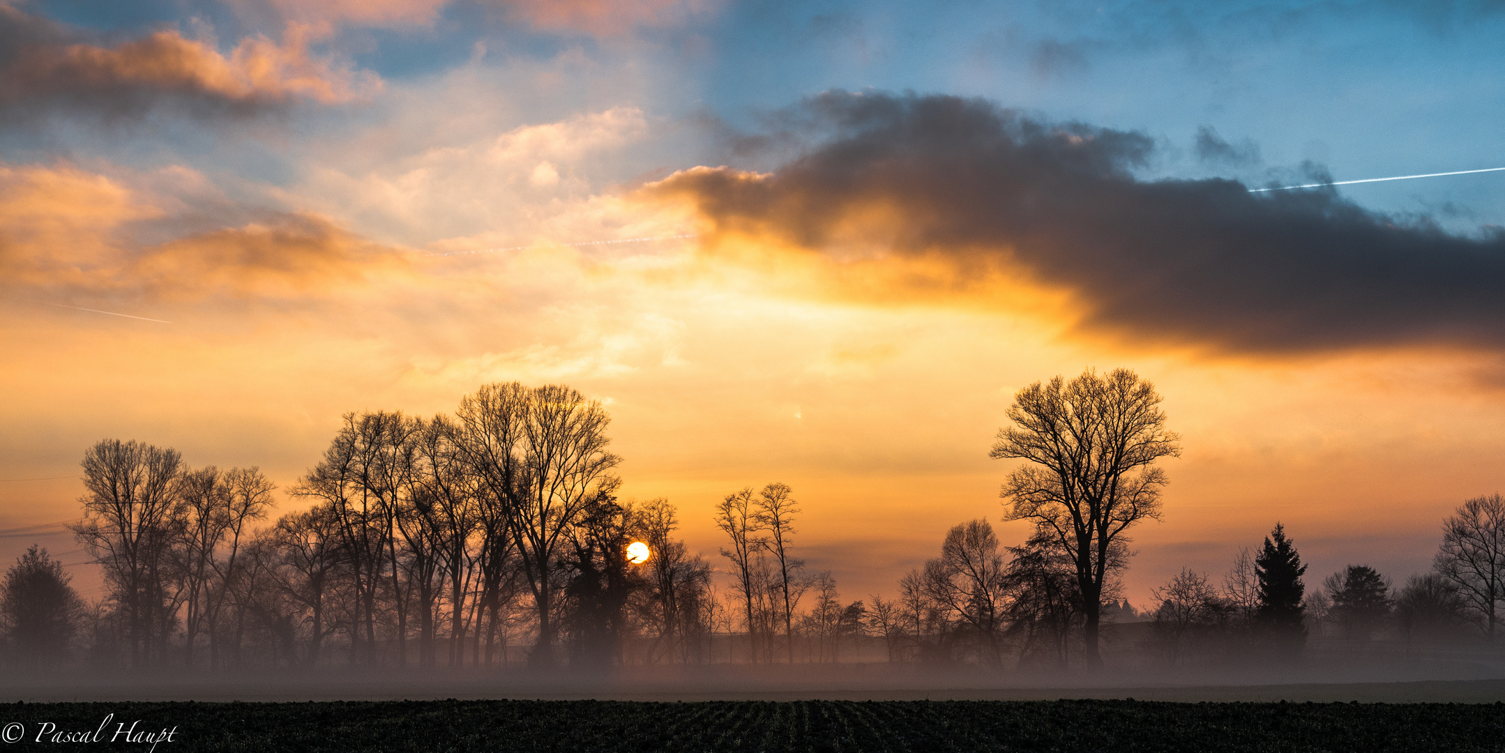 Ein Feld im Markgräflerland