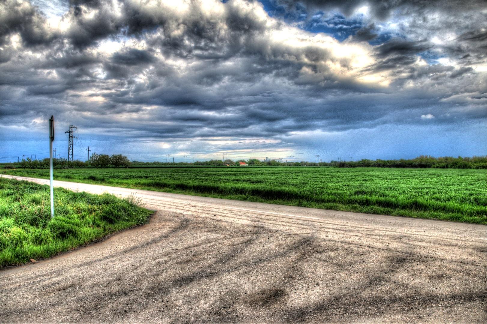 Ein Feld in Serbien
