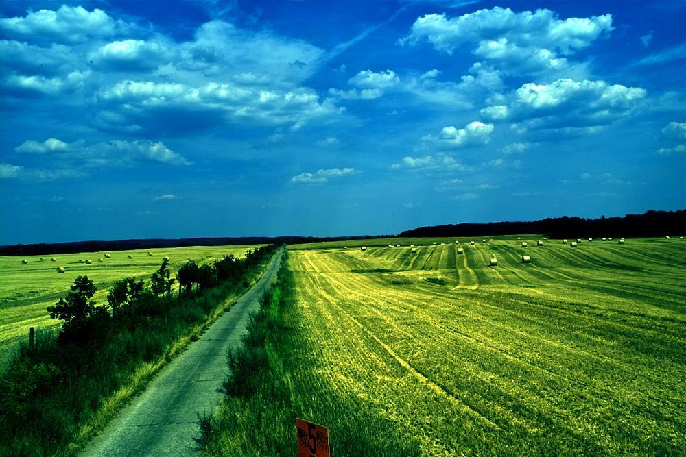 Ein Feld ins nirgendswo.....