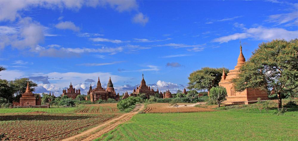 ein Feldweg in Bagan....