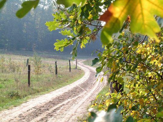 Ein Feldweg von Olsztyn nach Redykainy