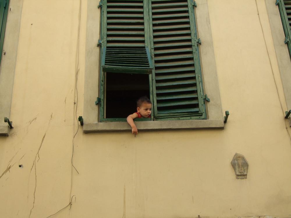 Ein Fenster in Florenz