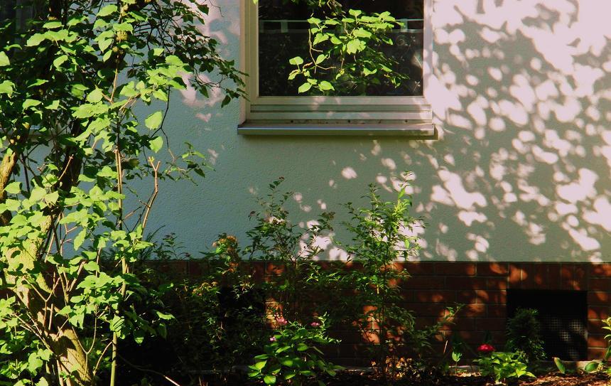 Ein Fenster irgendwo.