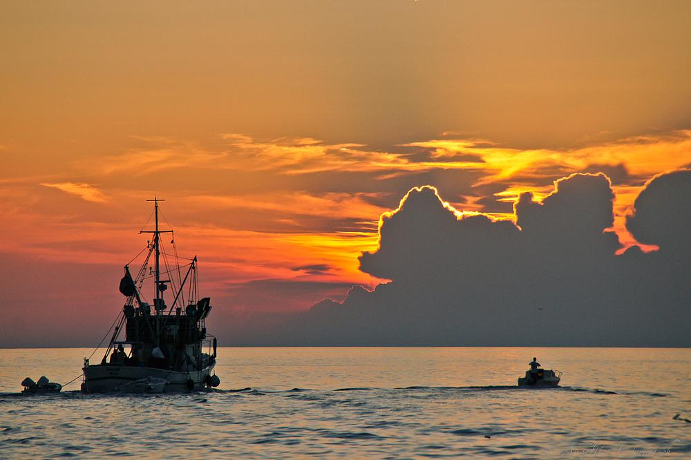 ein Fischerboot fährt in den Sonnenuntergang bei Rovinj