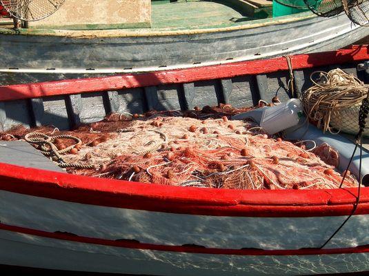 Ein Fischerboot in Carloforte Sardinien