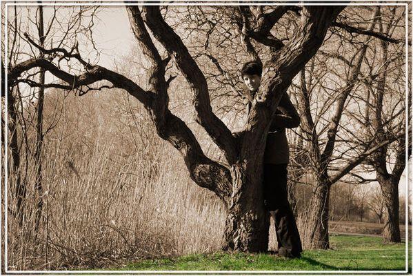 Ein Fräulein steht im Walde ...