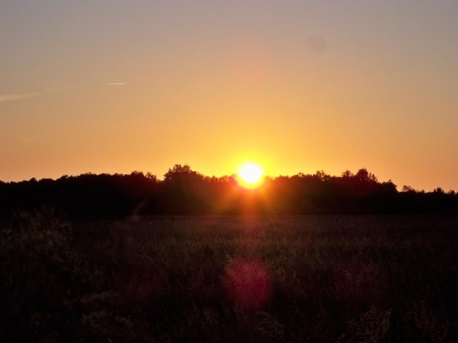Ein friedlicher und leuchtender Abschied des Tages