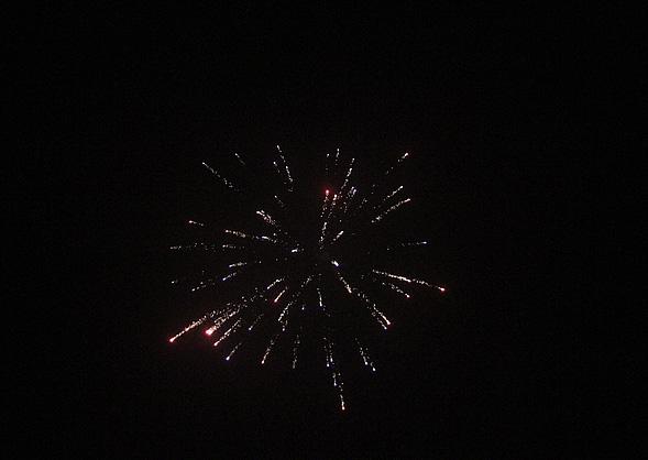 Ein frohes neues Jahr 2011