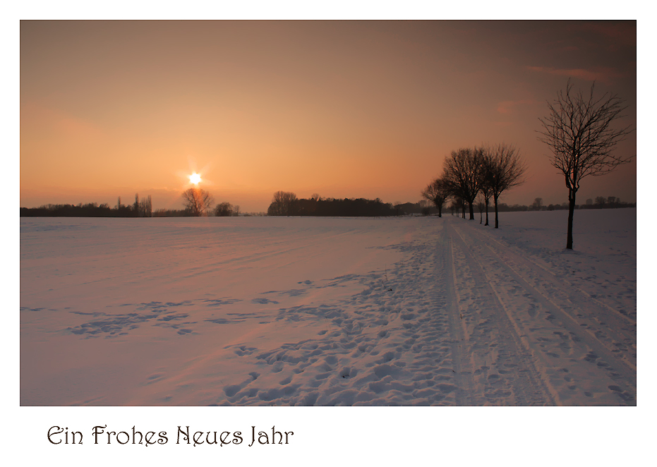 *Ein Frohes Neues Jahr*