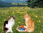 Ein Frohes Osterfest wünschen wir allen Freunden