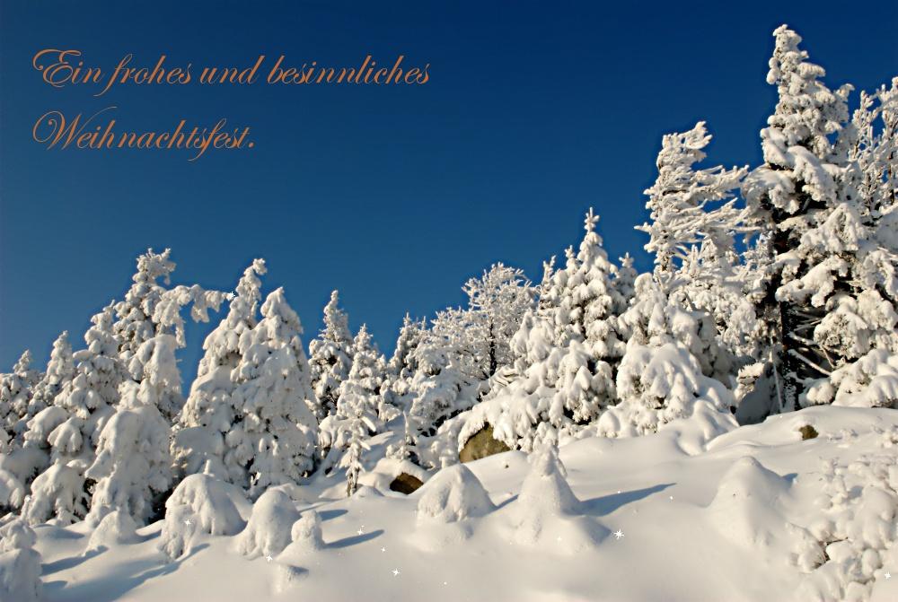 ein frohes und besinnliches weihnachtsfest foto bild