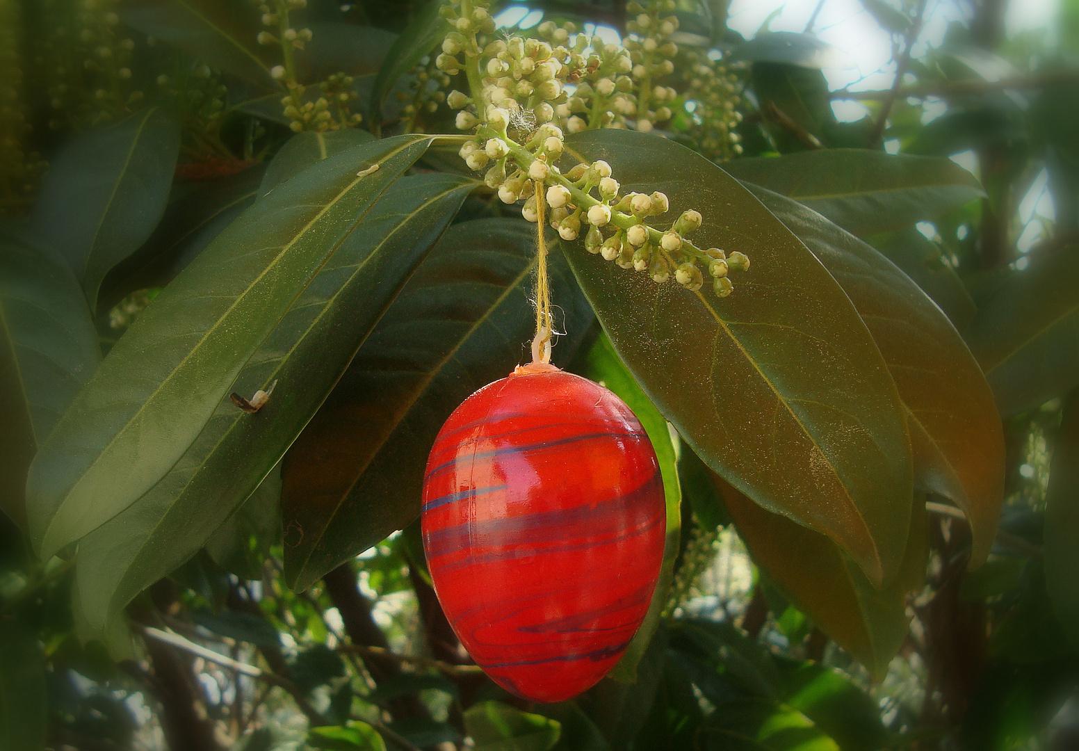 ...ein frohes und gesegnetes Osterfest !