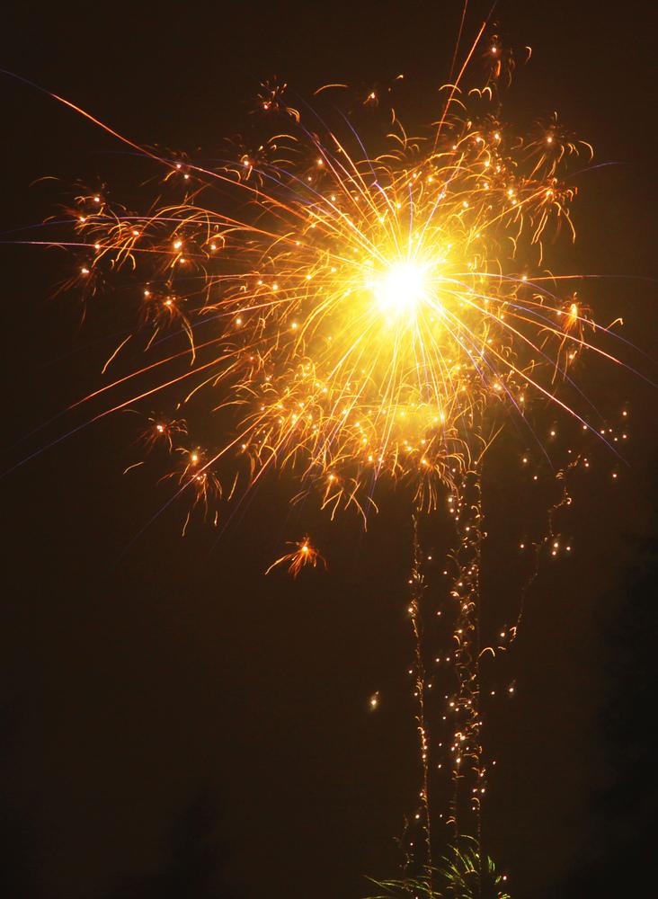 ein frohes und glückliches 2011...