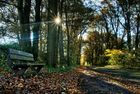 ein früher Herbstmorgen