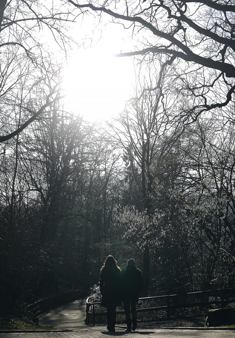 Ein Frühlingsspaziergang - im Winter