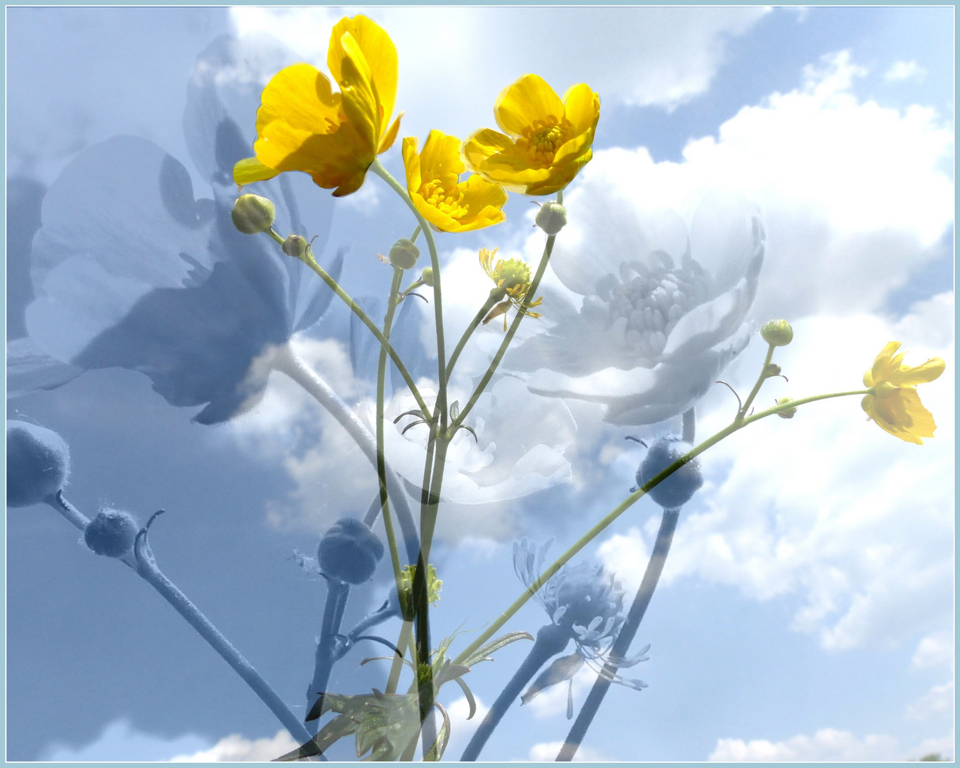 Ein Frühlingstag ...
