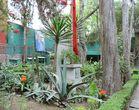 Ein Garten mit hohen Mauern für León Trotsky und Natalia Sedova in Mexiko