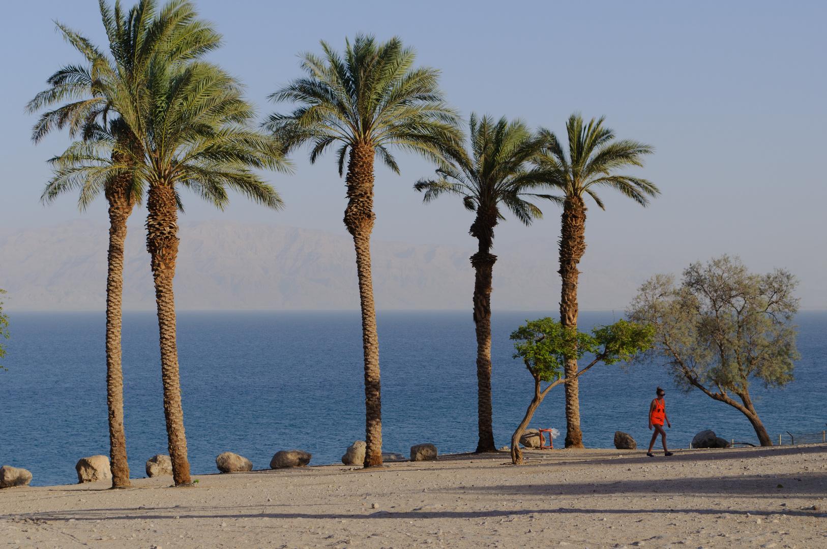 Ein Gedi Beach 1