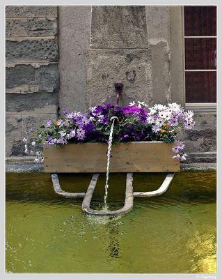 ~ ein gepflegter Dorfbrunnen ~