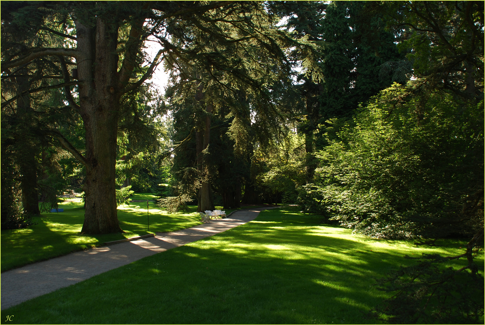 Ein gepflegter Park
