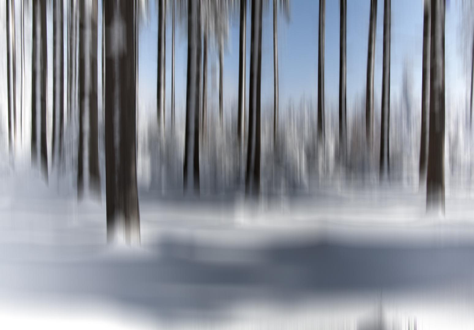 """ein """"Gespür für Schnee"""""""