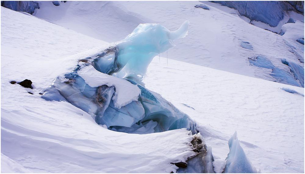 ein Gletscherelefant...