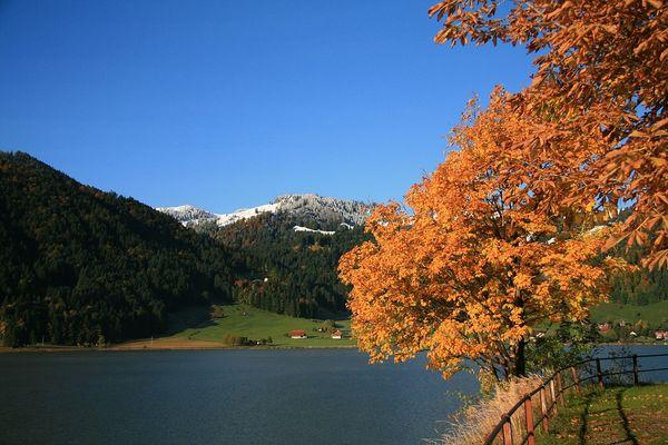 Ein goldener Herbsttag am Sihlsee