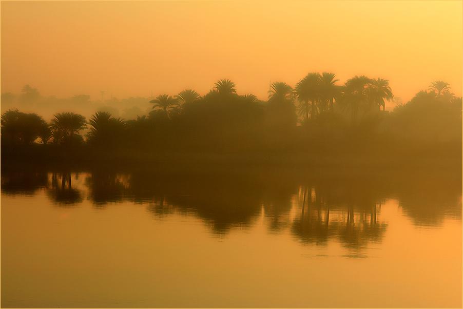 Ein goldener Morgen