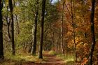 Ein goldener Oktobertag ...