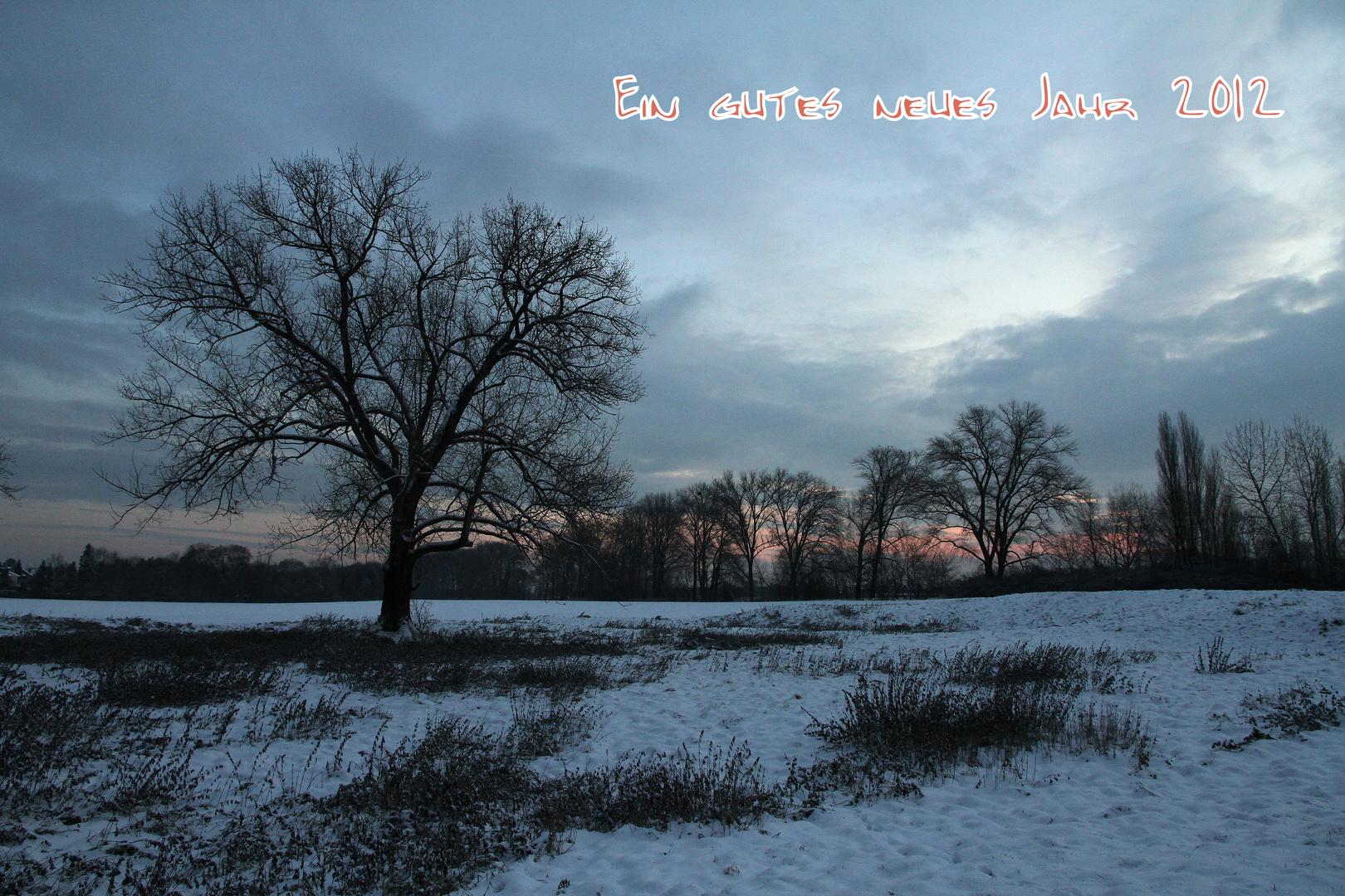Ein gutes neues Jahr 2012 ...