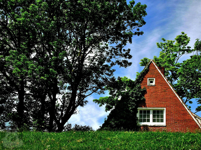 Ein Häuschen im Grünen