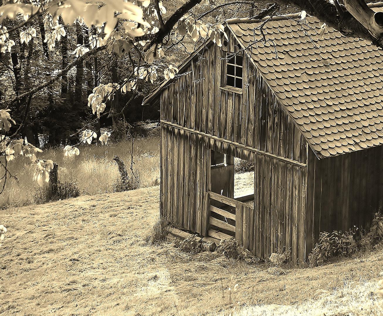 Ein Häuslein steht im Walde ganz still und stumm......
