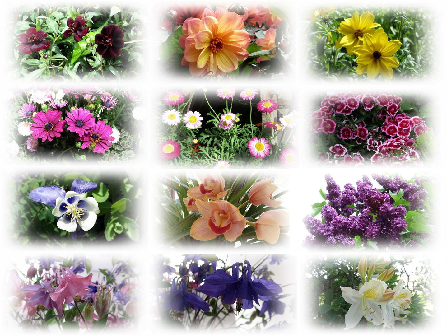 Ein Hauch von Blüten