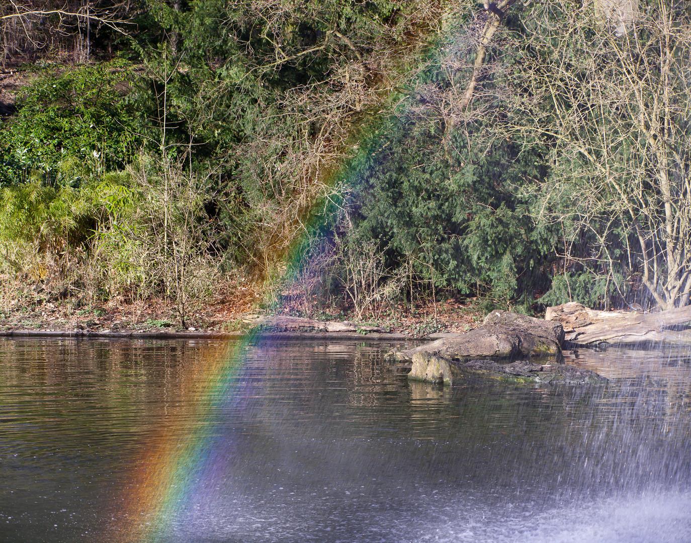 Ein Hauch von einem Regenbogen...