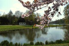 Ein Hauch von Frühling...