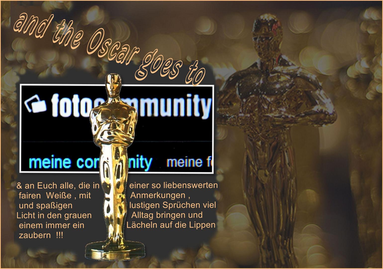 Ein Hauch von Hollywood (2)