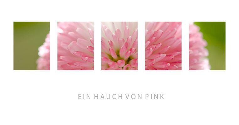 Ein Hauch von Pink