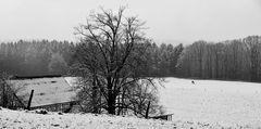 ein hauch winter...