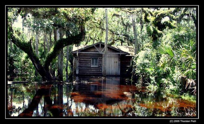 Ein Haus im Sumpf