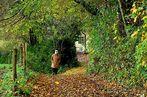 """""""Ein Herbst-Spaziergang"""""""