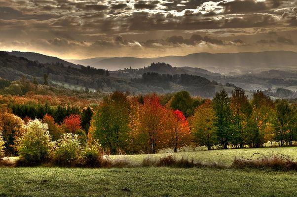 Ein Herbstmorgen !