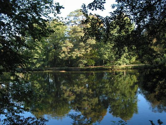 Ein Herbstmorgen im Bergpark