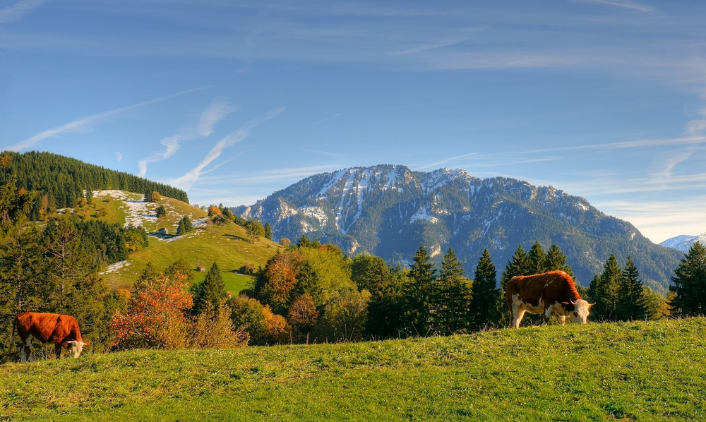 Ein Herbsttag im Ammergau