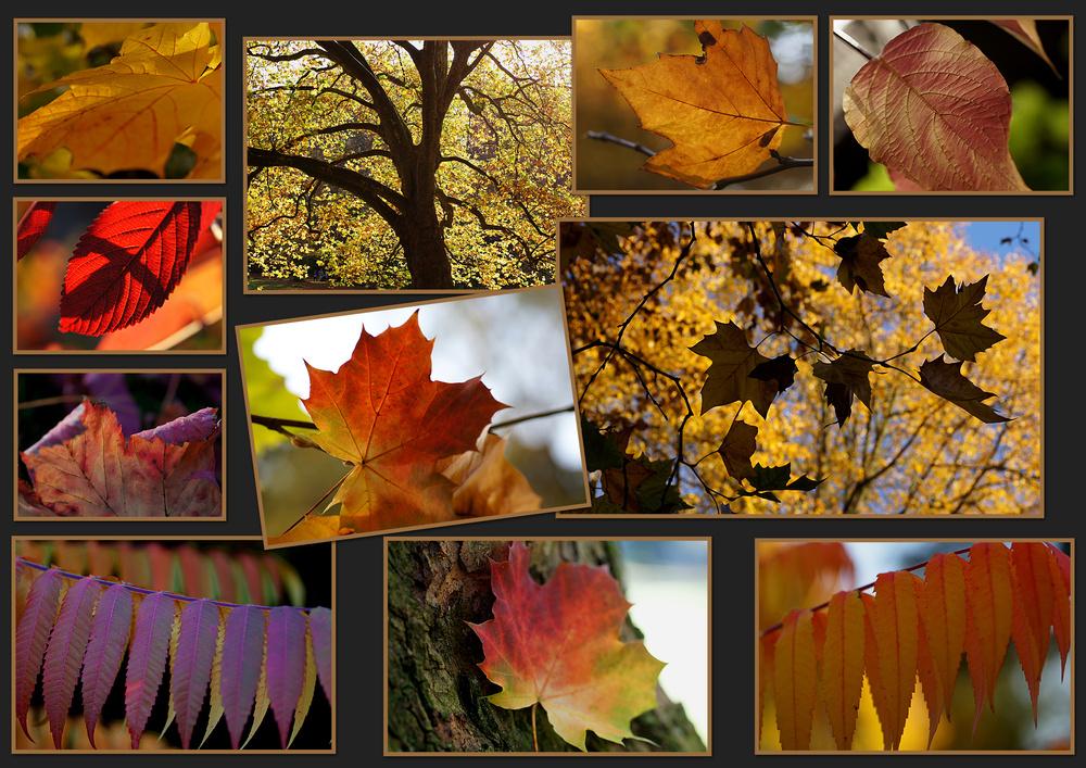 Ein Herbsttag im Kohlenpott