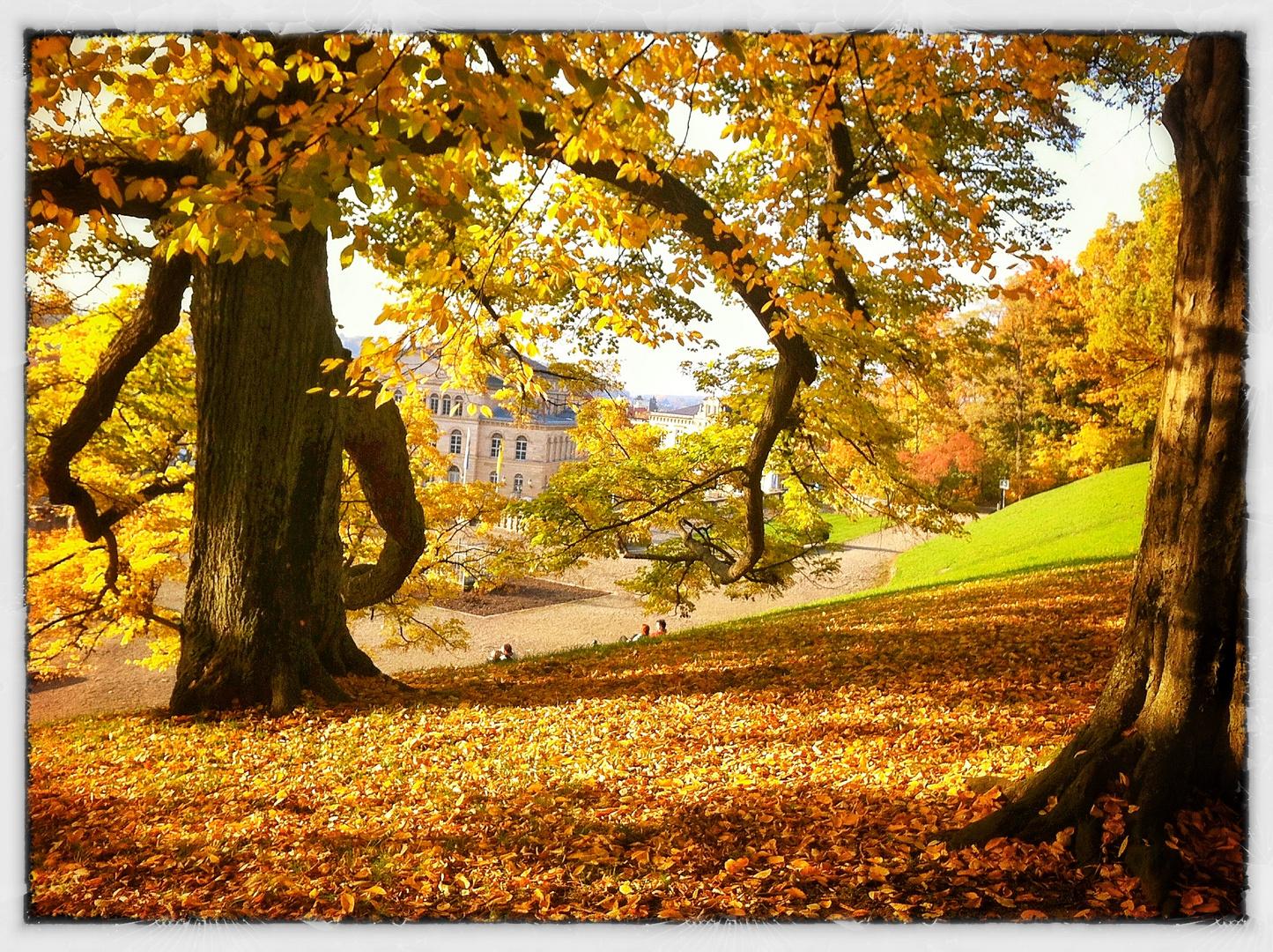 Ein Herbsttag in Bamberg 2012